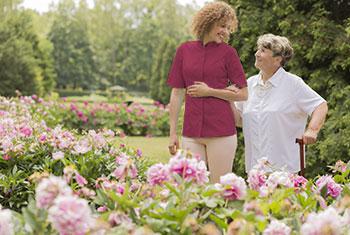 Companionship for elderly seniors